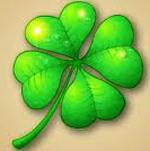 Клевер как символ удачи