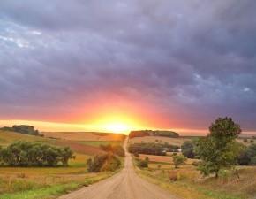 дорога рассвет