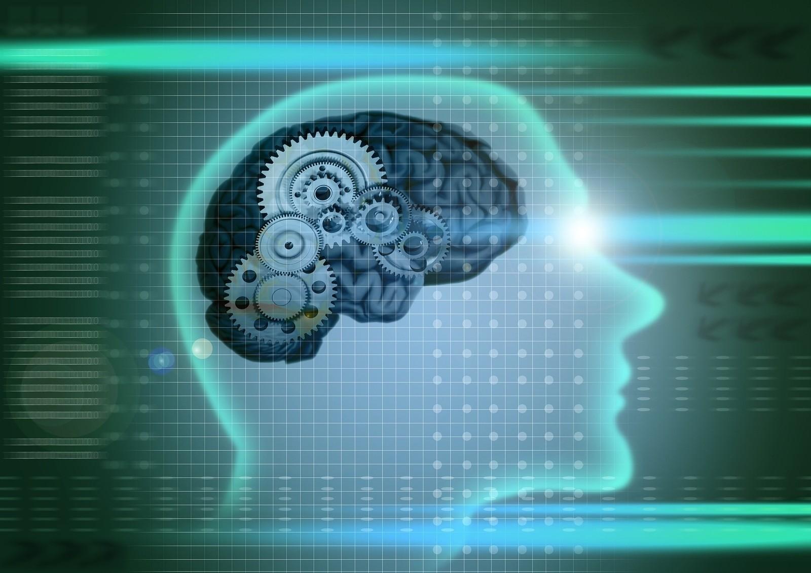 Как с помощью фильмов улучшить свои знания, интеллект?