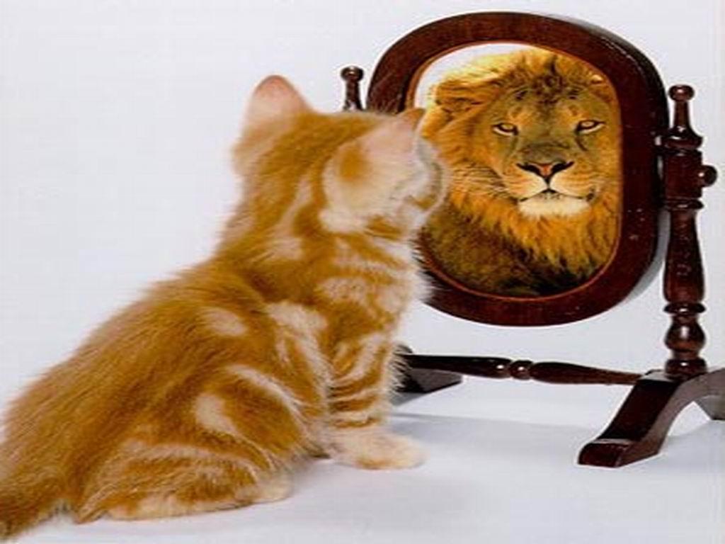 Повышаем свою самооценку